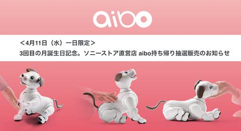 aibo-sony-store