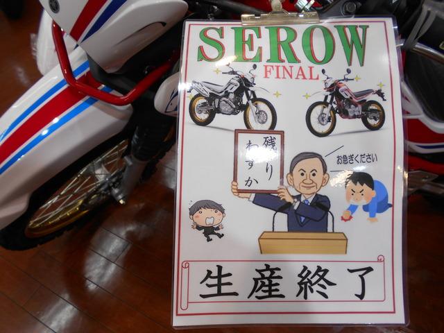 SEROW FINAL・・・・・・