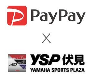 payysp1