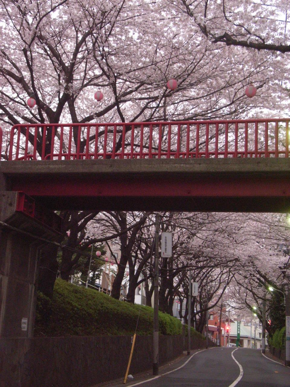 橋の下から・・・