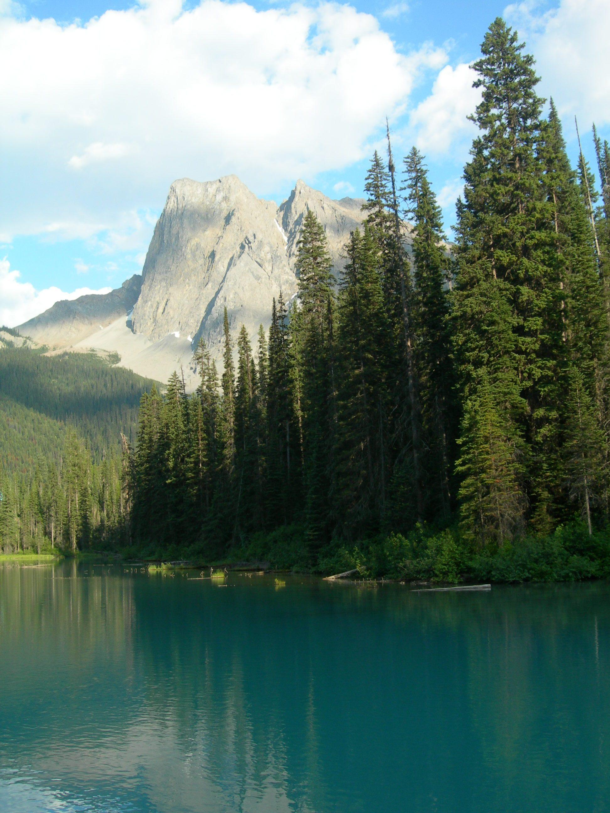 エメラルドグリーンのきれいな湖: 世の中色々 : エメラルド湖 カナディアンロッキー