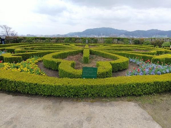 琵琶湖へ4