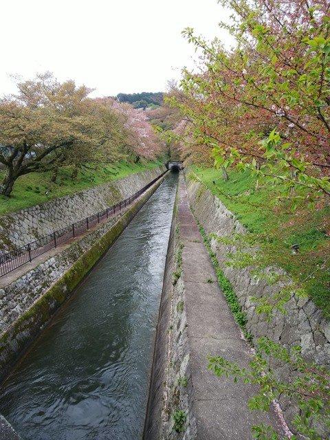 琵琶湖へ8
