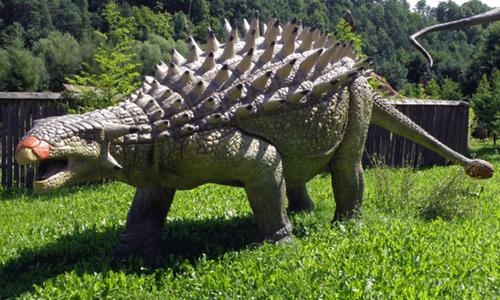 Ankylosaurusx