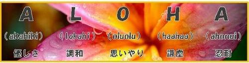 Image_db00995