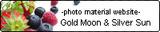 GoldMoon&SilverSun