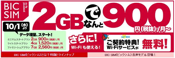 BIC SIM2GB