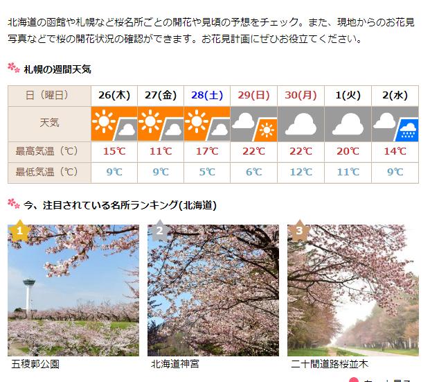 札幌の天気と桜
