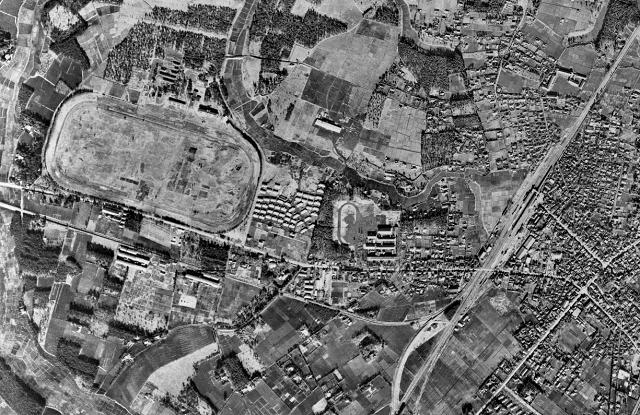 柏1 1948s