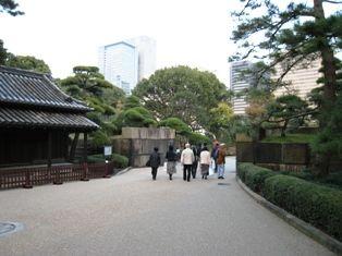 2009年秋 大樹 041