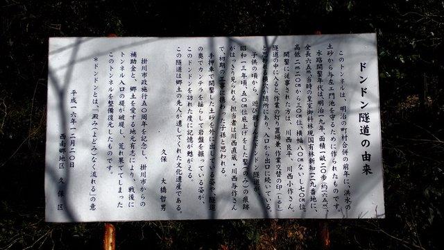 6 探鳥会小笠山3月4日 (3)