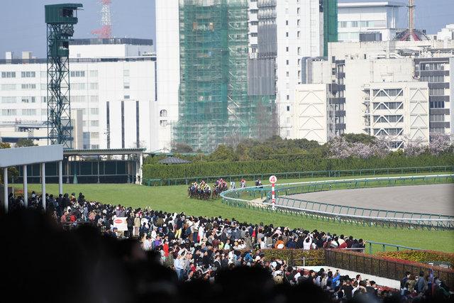 10高松宮記念 (2)
