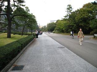 2009年秋 大樹 032