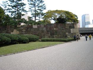 2009年秋 大樹 035