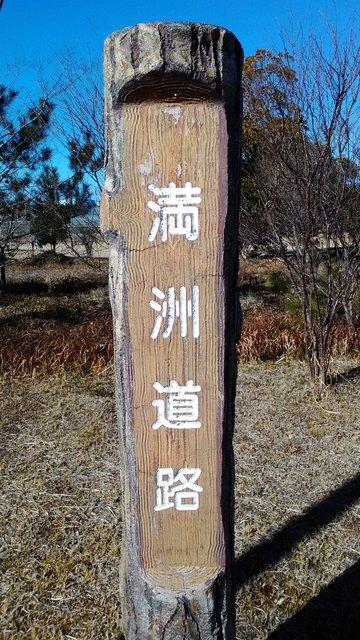 7 早朝散歩 (3)