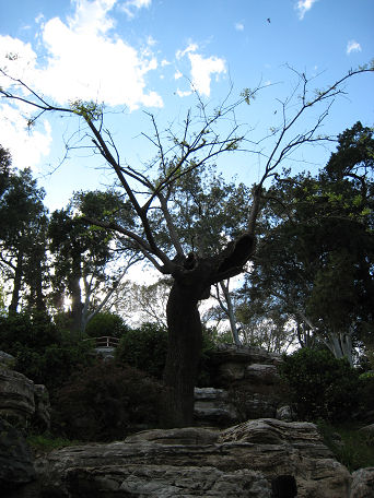 10 景山公園 (8)