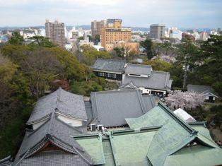2010年 岡崎桜 028