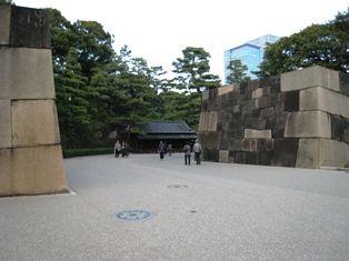 2009年秋 大樹 038