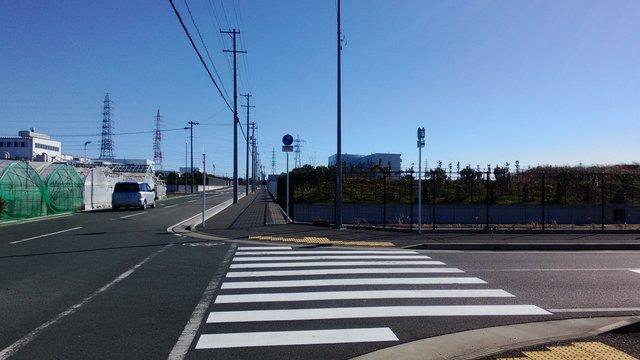 7 早朝散歩 (6)