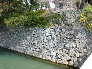 2011年 掛川・静岡・沼津 164