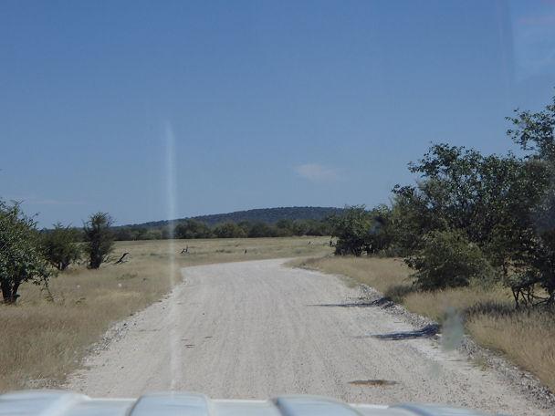 入口と道路 (2)