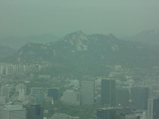 5南山タワー (13)