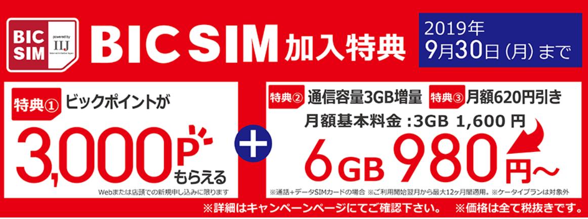 BIC SIM1
