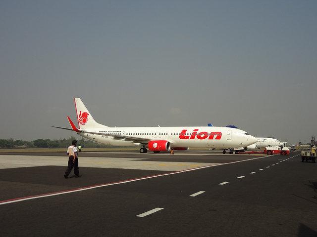 2 Lion (5)