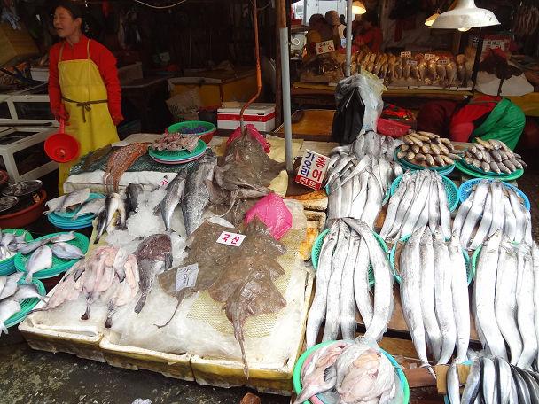 22 ジャガルチ市場 (24)