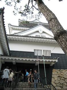 2010年 岡崎桜 032