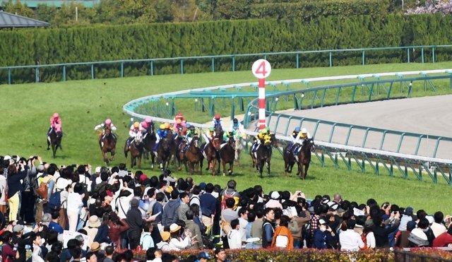10高松宮記念 (4)