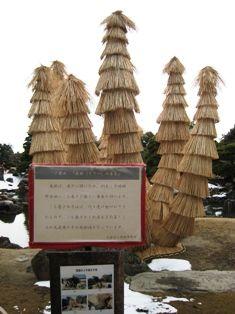 2011年1月 京都 152