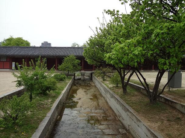 8昌徳宮 (43)