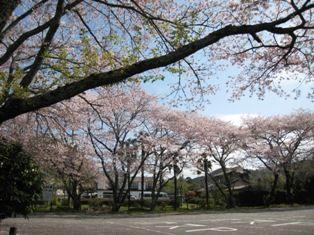 2010年 長篠・岩村・恵那峡・馬篭宿 001