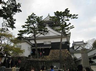 2010年 岡崎桜 023