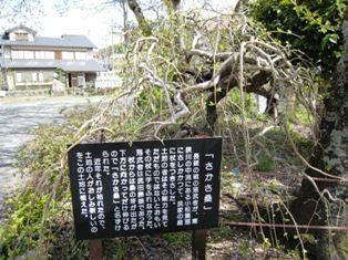 2010年 長篠・岩村・恵那峡・馬篭宿 003