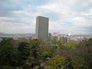 2010年 岡崎桜 029
