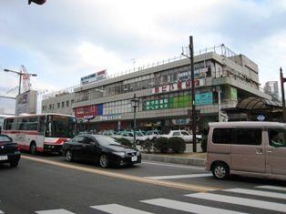2010年 岡崎桜 005