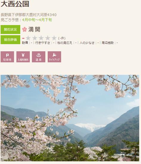 桜2 大西さくら
