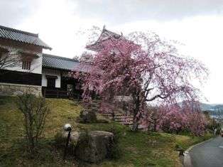 2010年 長篠・岩村・恵那峡・馬篭宿 139