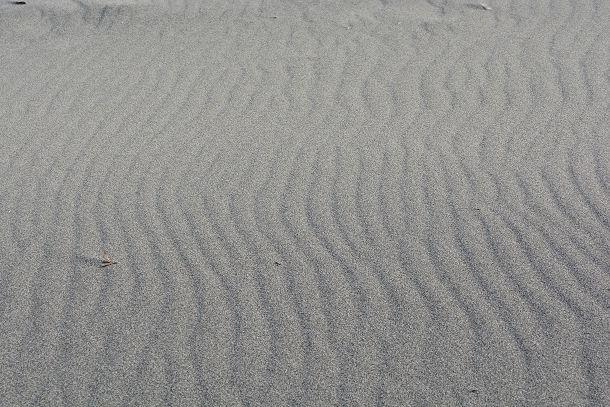 砂丘 (10)