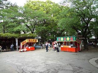 2011年 川越・鉢型城 583