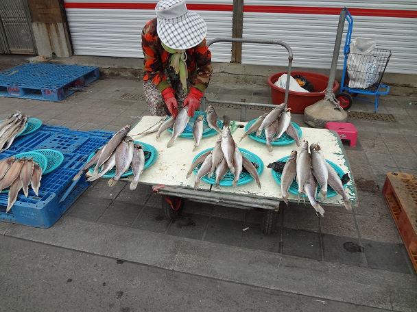 22 ジャガルチ市場 (4)