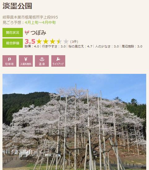 高遠 桜9 墨墨の桜