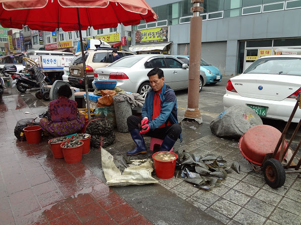 27 朝鮮通信使&ジャガルチ市場 (8)