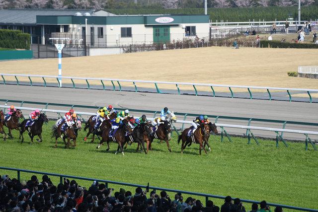 10高松宮記念 (6)