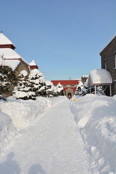7すごい雪 (2)