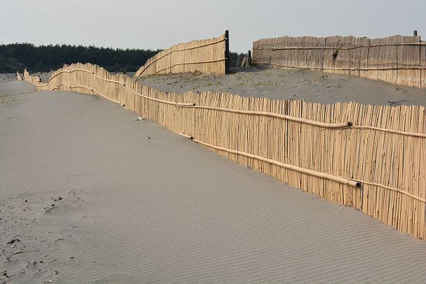 砂丘 (9)