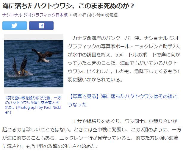 溺れるハクトウワシ