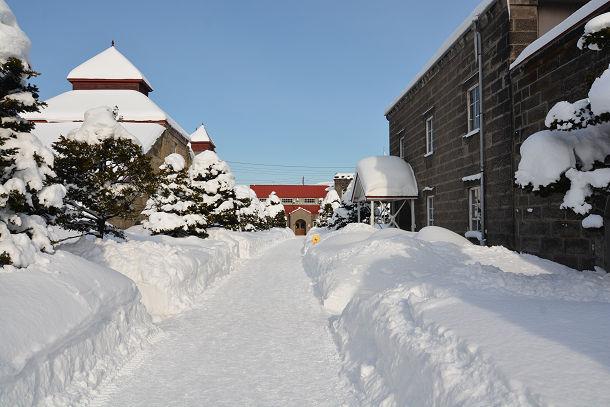 7すごい雪 (1)